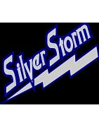 SilverStorm Team Store